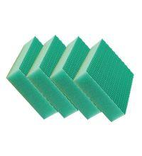 Spons Color Clean HACCP groen
